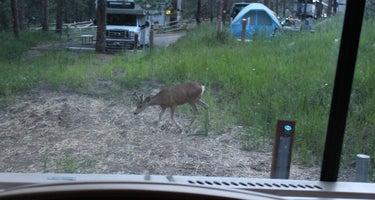 Chief Hosa Campground