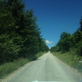 The National Forest roads in/out of Dolly Sods Wilderness area are gravel, somewhat narrow (definitely for two cars), unmaintained in the snowy months (read 4x4) and can be rough during the summer. But the average passenger vehicle can travel them without issue.