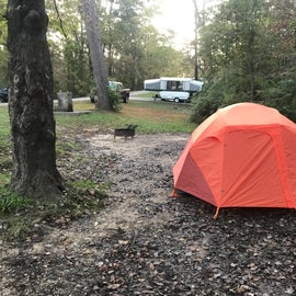 Campsites were squeezed on narrow strips along both sides of the park roadway. While it appears a decent distance to the camper in that direction...we were less than 20' from the tent camper on Site 90. All line of site. Terrain behind the sites was thickly wooded and descended into dense brambles.