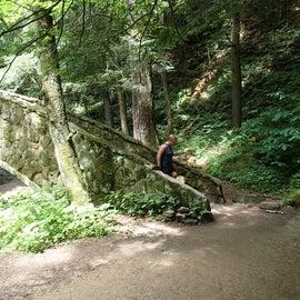 Numerous incredible bridges along the trail