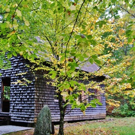 Nine miles down the road is the Cradle of Forestry in America, which is the site of the first forestry school in America.  In its two miles of trails, you can learn a lot of history.  it is a pleasant walk.