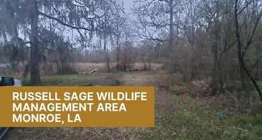 Russell Sage Wildlife Management Area