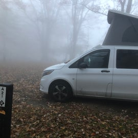 Site A21 in the fog