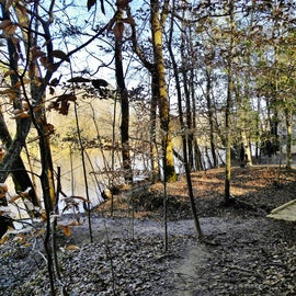 Once you get down the stairs, there is a one of the many trails that run beside the river.