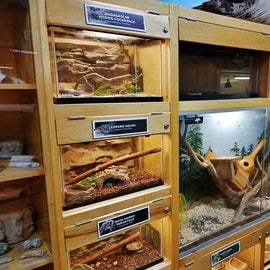 This is just one of the MANY exhibits at the nature center.