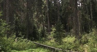 Okanogan-Wenatchee/Swauk