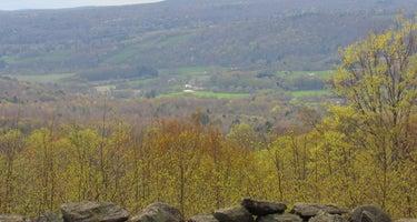 Piney Woods Hilltop Retreat