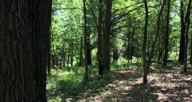 Adair Cemetery Primitive Campsite