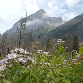 Great hiking minutes from the campground
