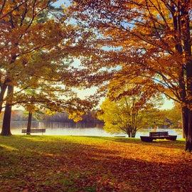 Stunning in fall