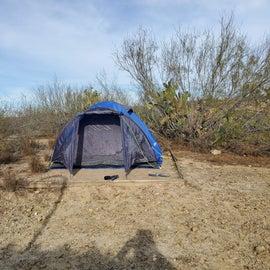 Overgrown tent pad