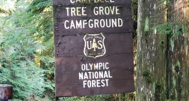 Campbell Tree Grove Campground