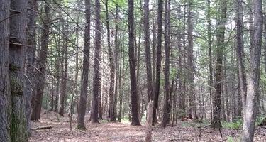 Trailside Camp at Greenhill