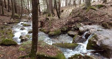 Pleasant Mountain Stream Camp