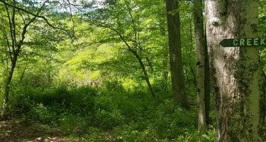 Big Indian Wilderness Paradise