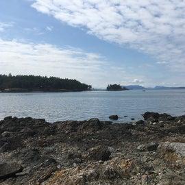 Looking off towards Pearl Island