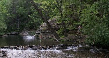 Double Camp/Citico Creek