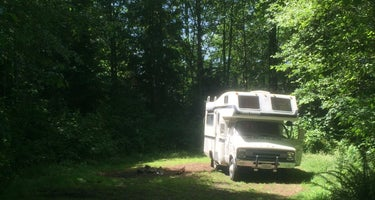 Clatsop State Forest Gnat Creek Campground