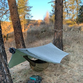 Nice hammock hang sites between Ponderosa Pines.
