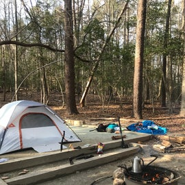Campsite! Spacious tent pads