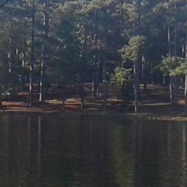 Site100 from across lake