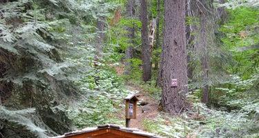 Finner Creek Campground