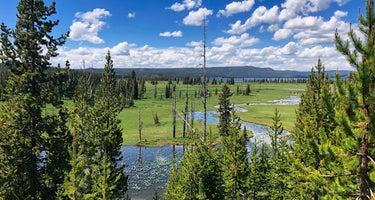 Shoshone Lake Backcountry Campsites