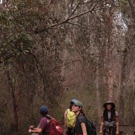 Hiking the trails