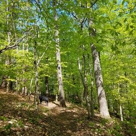 Lots of hiking trails