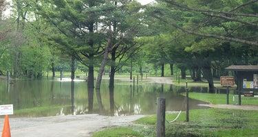 Pinicon Ridge Park