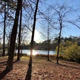 Lake view at Site 56