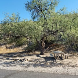 Probably an original parkcampsite. Just off the original road with easy access, and the desert's version of shade