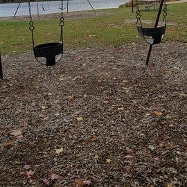 swings near the beach