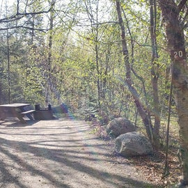 Site 20 Katahdin Stream Campground