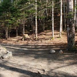 Site 16 Katahdin Stream Campground