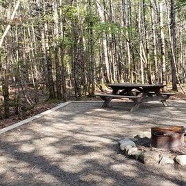 Site 24 Katahdin Stream Campground