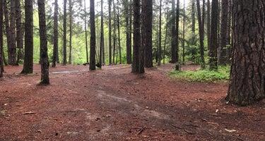 Elderberry Flats Campground
