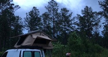 Boondock Dispersed Camping Alabama
