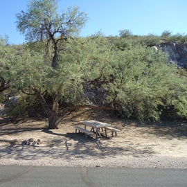Reservable campsites on south end of park loop