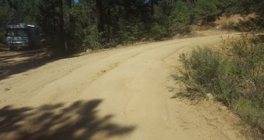 C101 Wolf Creek Road Dispersed Camping