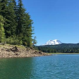 Alder Lake view of Mt Rainier