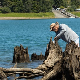 Finding Lures in the tree stumps Boat ramp in the background