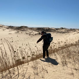 Checking out the dunes