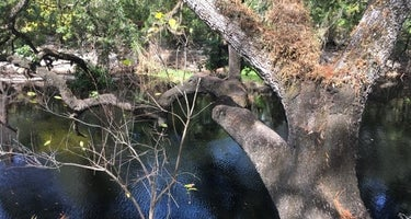Foster Bridge Primitive Site Green Swamp West