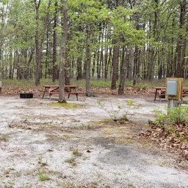 Site 102 Wellfleet Hollow State Park near parking lot