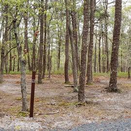 Group site panoramic Wellfleet Hollow State Park