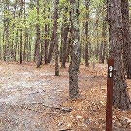 91 Wellfleet Hollow State Park