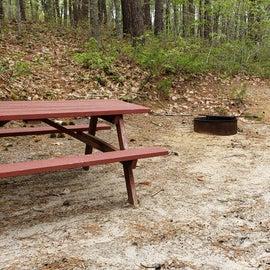 95 Wellfleet Hollow State Park