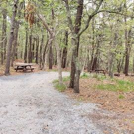 2 Wellfleet Hollow State Park