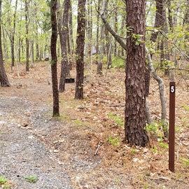 5 Wellfleet Hollow State Park
